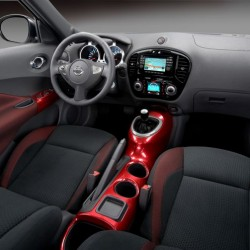 Juke Interior - slightly different colors than mine